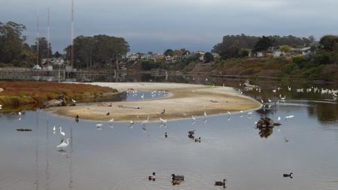 corcoran lagoon